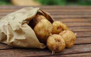 Можно ли хранить картошку и лук в холодильнике